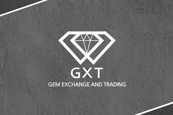 新着案件のGXTの概要と亮平の所感を解説